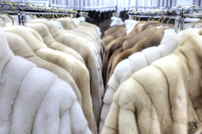 Things to consider before shopping for furs